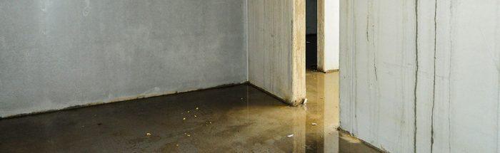 fischer-dach feuchter Keller
